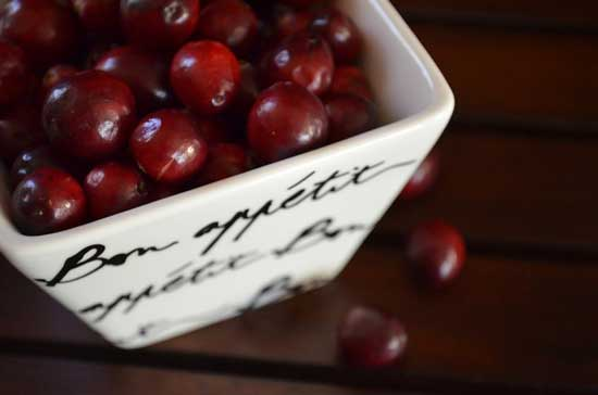 veenbessen cranberries